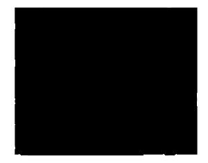 logosancrispin(web-grande-transparente)